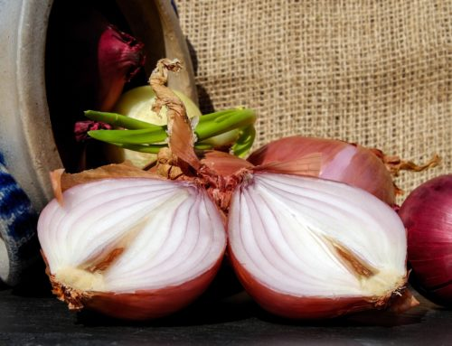 Onions are Bulbous Beauties with Many Health Benefits